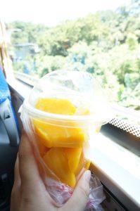 tw_mango