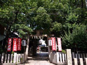 miyukimoritenp